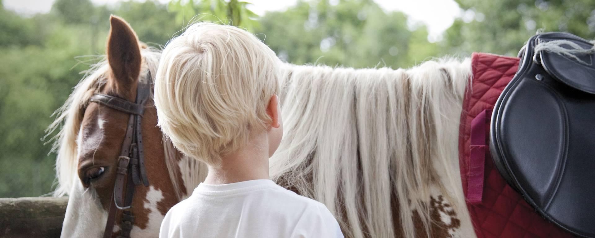 Petite balade avec les poneys - Parc d'Olhain © Brigitte Baudesson
